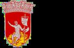 logo-mairie-st-jean-du-bruel-2